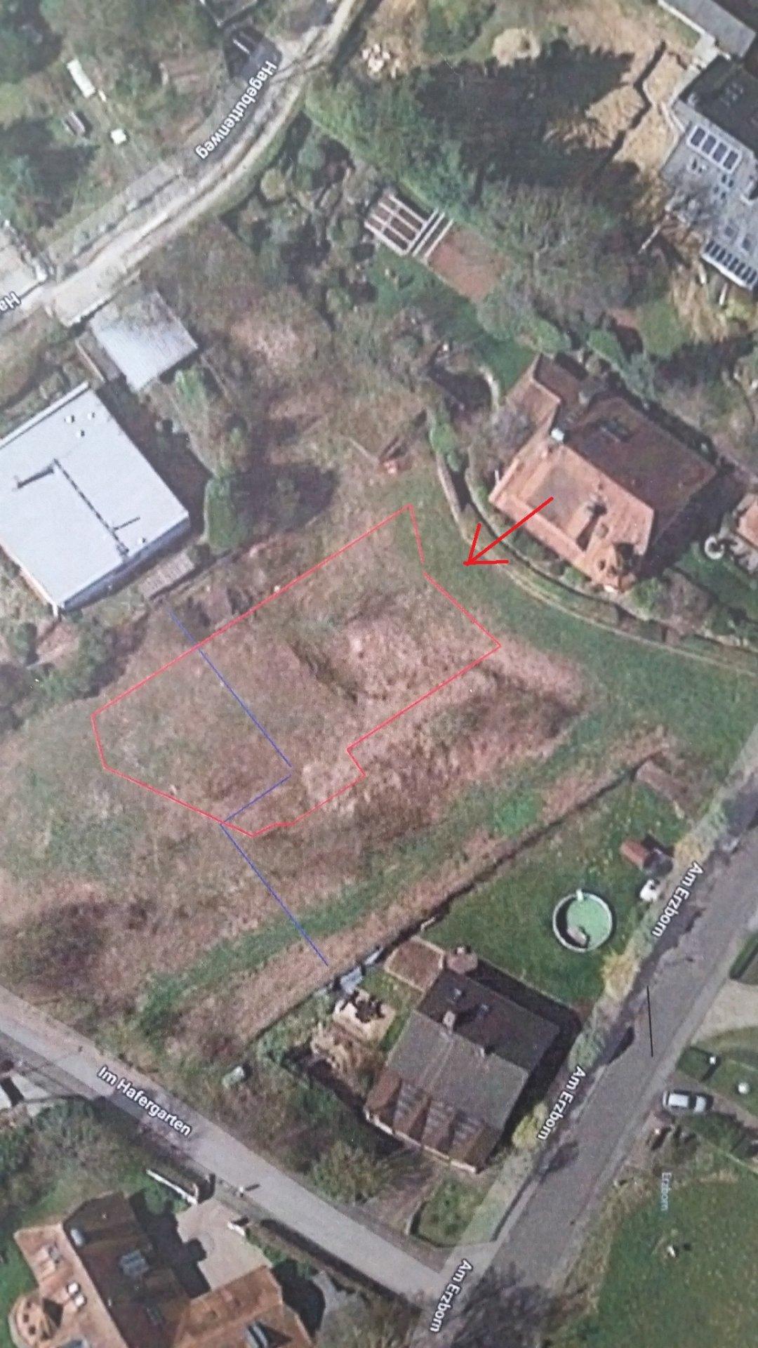 Ansicht_Satellit_Baufenster_pfeil.jpg