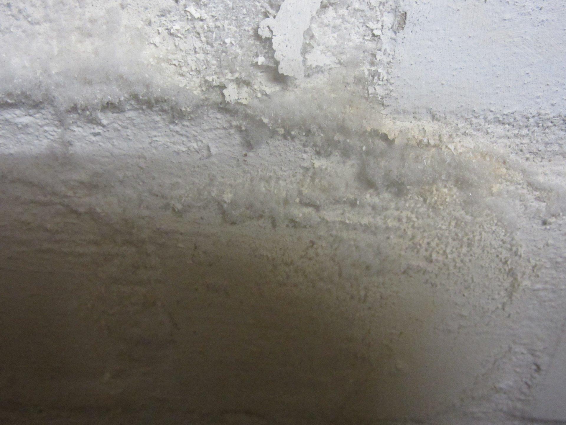 Salpeter An Der Kellerwand