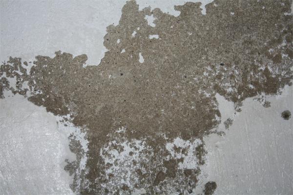 Berühmt Keller: Salpeter-Ausblühungen - Abwarten? ZP79