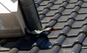 Wespen Unter Dachpfannen Im Neubau Wer Haftet Hier